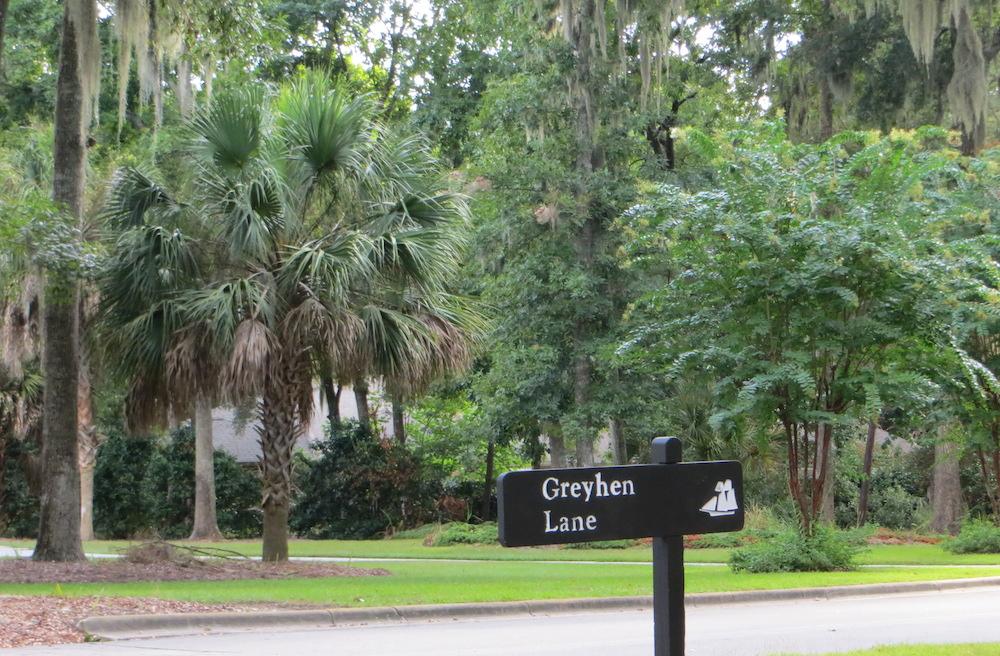 Greyhen Lane
