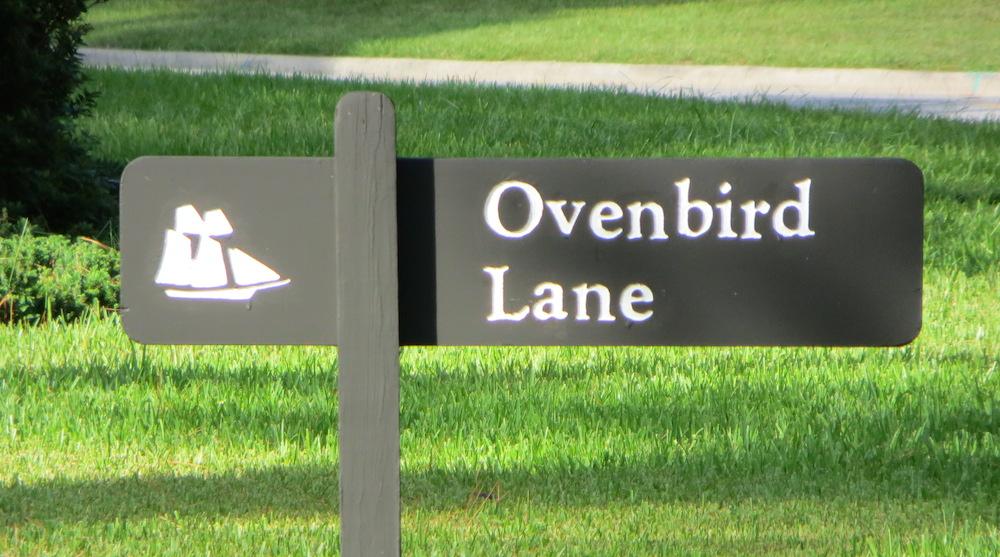 Ovenbird Lane