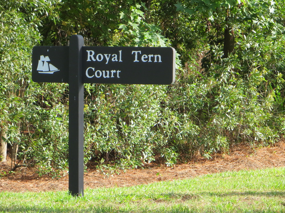 Royal Tern Court
